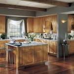 kitchen-remodel-armstrong-cabinets-contemporary-bethesda-maryland1