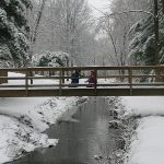 Bridge_74a