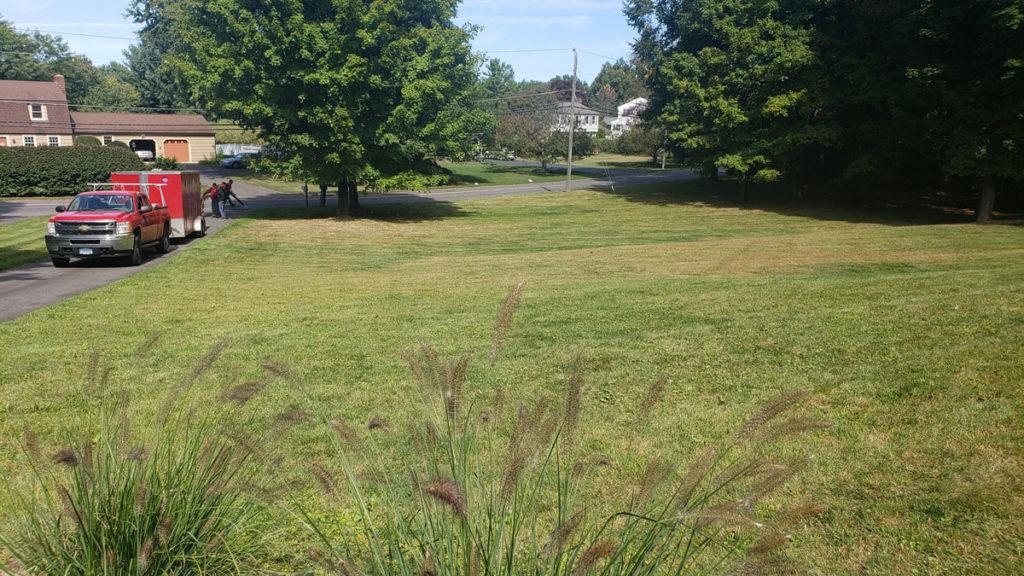 EML Landscaping cut lawn