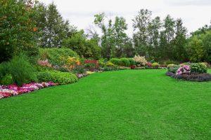 Better Landscaping