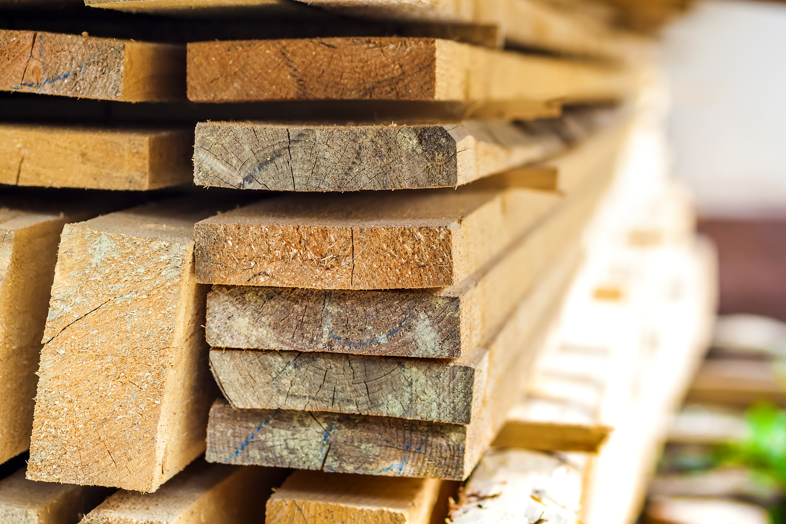 Choosing The Best Wood For Your Woodworking Project Barney Carey