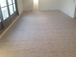 Carpet_17