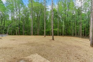 6090-Reynolda-Trace-Greensboro-large-033-4-Back-Yard-1500x1000-72dpi