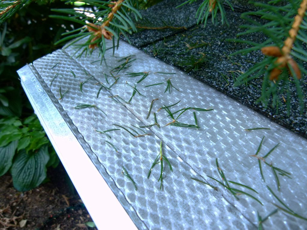 Clean-Gutter-with-Fir-Needles