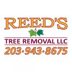 Reed-s-Tree-Removal-1