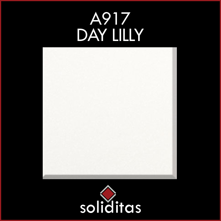 A917DAYLILY
