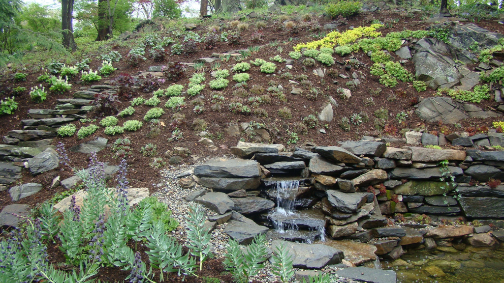 Landscaping_06