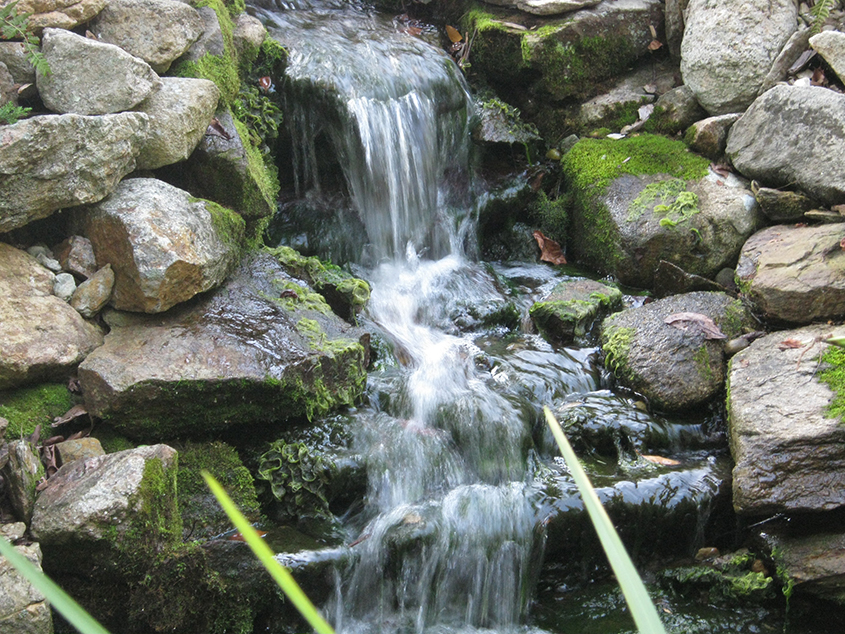 Ponds-and-Waterfalls_10