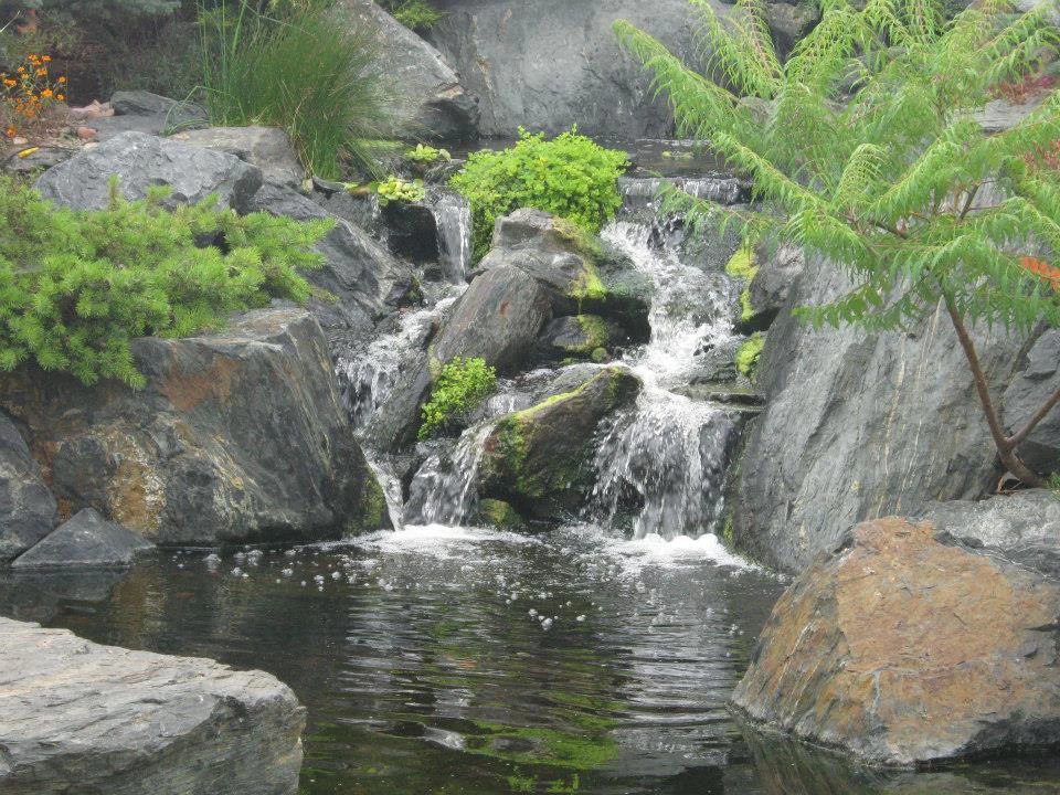 Ponds-and-Waterfalls_33